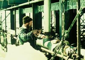NIPR_009838.jpg