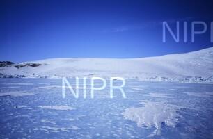 NIPR_011344.jpg