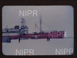 NIPR_011938.jpg