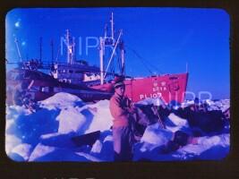 NIPR_011940.jpg