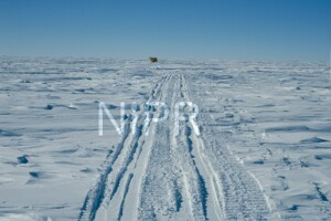 NIPR_013554.jpg