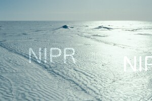 NIPR_013563.jpg
