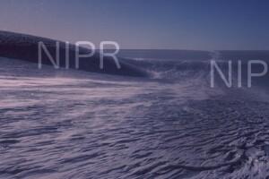 NIPR_013565.jpg
