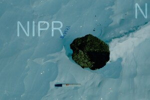 NIPR_013566.jpg
