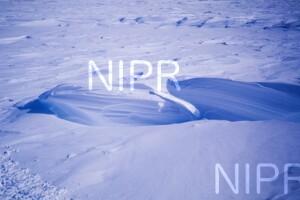 NIPR_013778.jpg