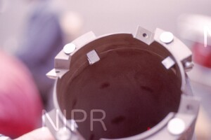 NIPR_013968.jpg