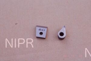 NIPR_013971.jpg