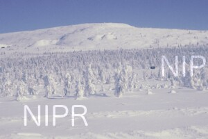 NIPR_014026.jpg