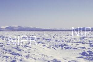NIPR_014027.jpg