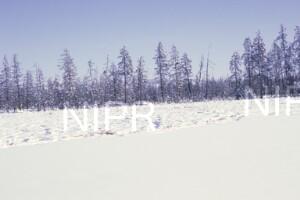 NIPR_014033.jpg