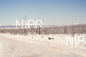 NIPR_014041.jpg