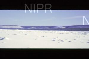 NIPR_014051.jpg