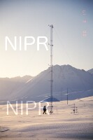 NIPR_014178.jpg