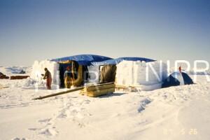 NIPR_014214.jpg