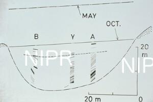 NIPR_014330.jpg