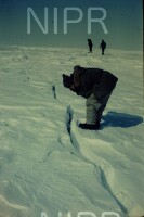 NIPR_014850.jpg