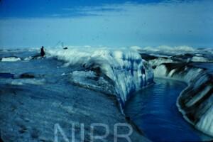NIPR_014853.jpg