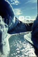 NIPR_014854.jpg