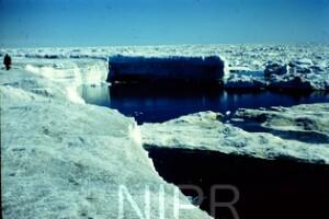 NIPR_014860.jpg