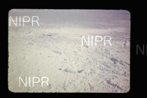 NIPR_015166.jpg