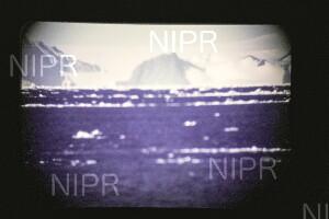 NIPR_015180.jpg