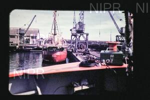 NIPR_015181.jpg
