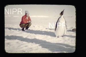 NIPR_015299.jpg