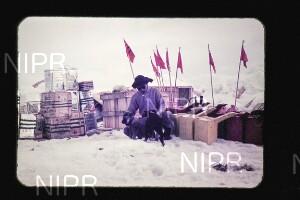 NIPR_015315.jpg
