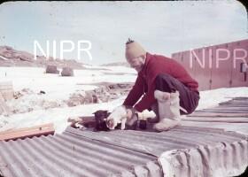 NIPR_015324.jpg