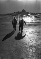 NIPR_015440.jpg