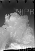 NIPR_015487.jpg