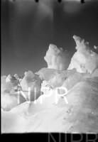 NIPR_015488.jpg