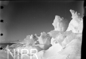 NIPR_015490.jpg