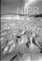 NIPR_015501.jpg