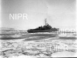 NIPR_016350.jpg