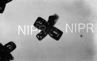 NIPR_016381.jpg