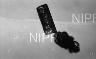 NIPR_016382.jpg