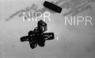 NIPR_016383.jpg