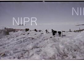 NIPR_016474.jpg