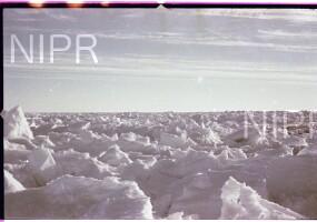 NIPR_016493.jpg