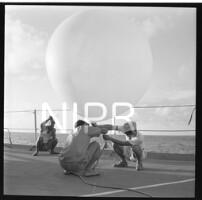 NIPR_016638.jpg