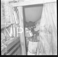 NIPR_016747.jpg