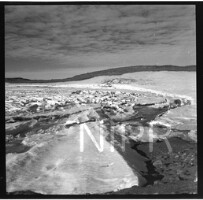 NIPR_016765.jpg