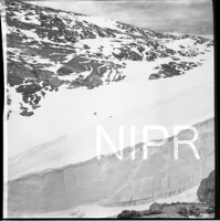 NIPR_016864.jpg