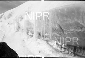 NIPR_017002.jpg