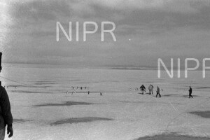 NIPR_017053.jpg