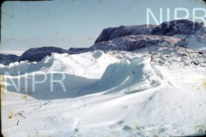 NIPR_017161.jpg