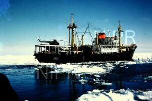 NIPR_017339.jpg
