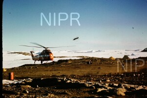 NIPR_017347.jpg