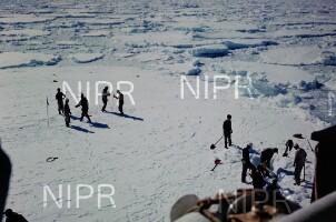 NIPR_017359.jpg